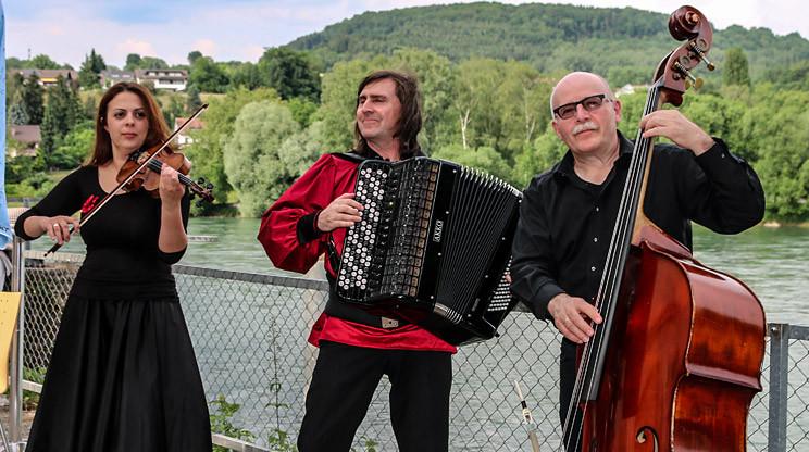 Geigenspielerin / Violinistin mit Trio Balkanesco auf einer Geburtstagsfeier