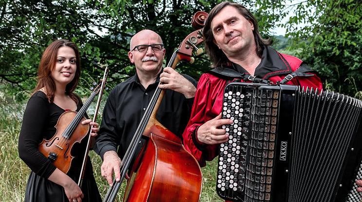 Geigenspielerin / Violinistin mit Trio Balkanesco auf einer Geburtstagsfeier, Fotogalerie